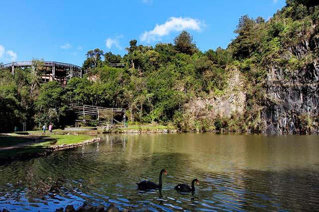 Universidade Livre do Meio Ambiente - Dez locais para curtir Curitiba durante a 35ª Oficina de Música