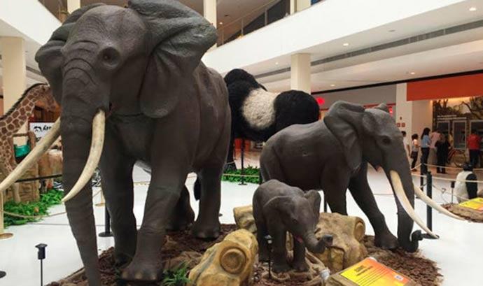 exposição África Animais Selvagens - Quatro shoppings de São Paulo oferecem atividades gratuitas para crianças