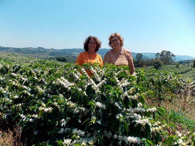 Leila e Margarida administram juntas propriedade cafeicultora Crdito Arquivo pessoal Leila e Margarida 623x468 - Mulheres conquistam espaço na produção de café em Minas Gerais