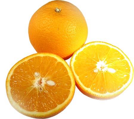 """laranja - Cardiologista do Hospital Sírio Libanês fala sobre colesterol """"bom"""" e """"ruim"""""""