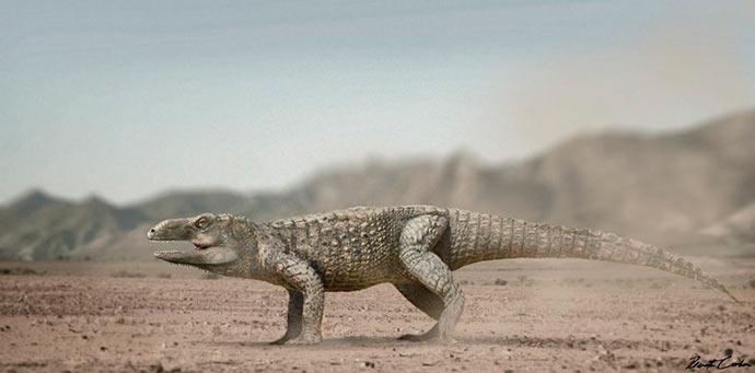 Pagosvenator candelariensis corpo 1024x506 - Pesquisadores da UFRGS e da Univasf identificam novo réptil fóssil de 230 milhões de anos no RS