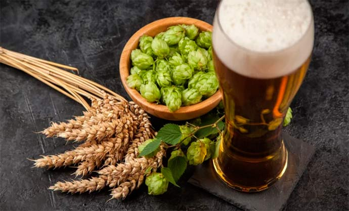 cerveja - PROTESTE apresenta ranking da cerveja