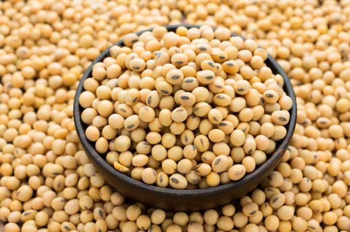 soja - Vegetarianismo - alimentos que podem substituir a carne