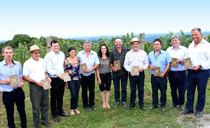 Produtores Gaúchos de Vinho Colonial 1 - Produtores familiares comemoram a abertura oficial da colheita da uva no Rio Grande do Sul