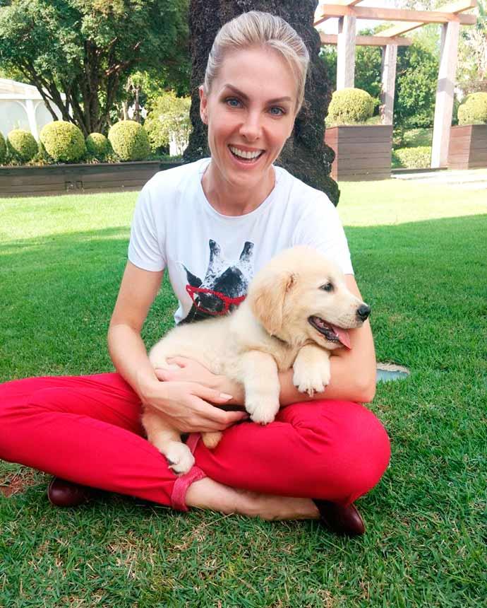 ana hickmann cão guia - Ana Hickmann adota filhote que será treinado como cão-guia