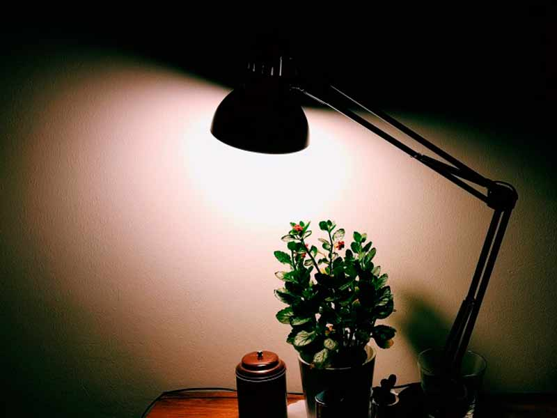 energia eletrica - Vantagens e riscos de aderir à tarifa branca de energia