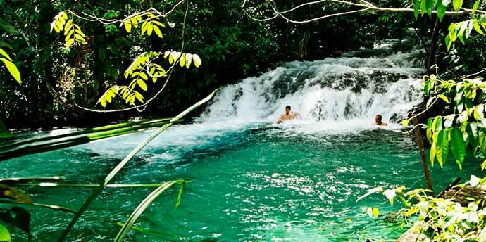 formiga 1 - Os encantos naturais do Parque do Jalapão em Tocantins