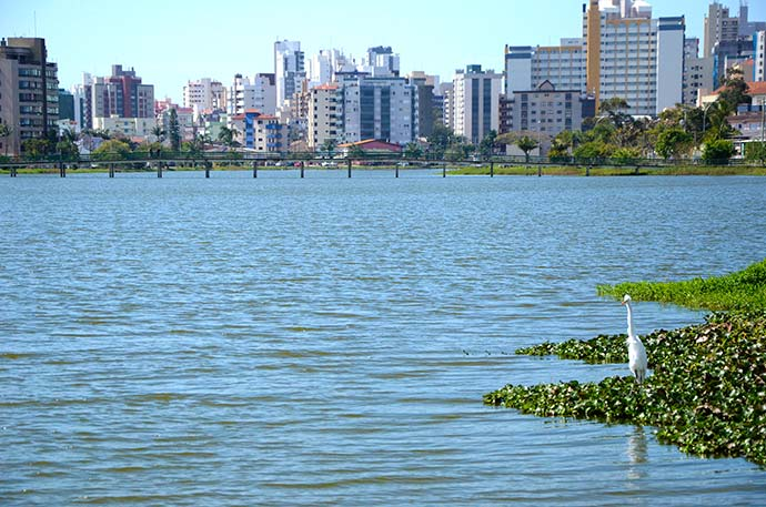 lagoa2 - Torres aumenta cuidados com o Aedes aegypti