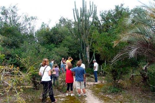 lami - Reserva do Lami realiza trilhas guiadas em Porto Alegre