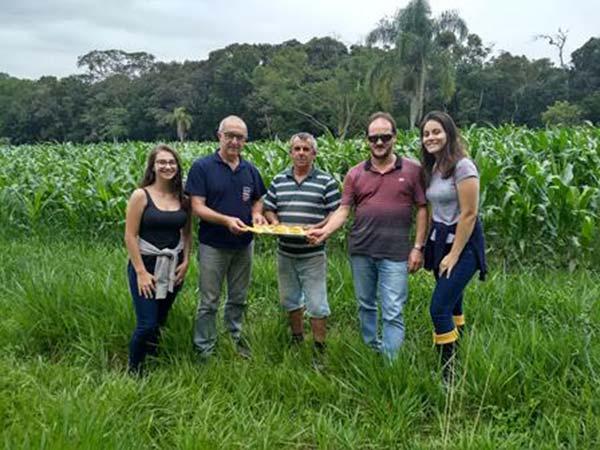 milho vespas torres1 - Prefeitura de Torres distribui vespas para combater a lagarta do milho