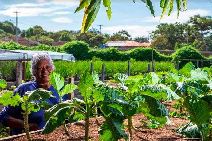 projetos fundacao cargill - Fundação Cargill apoiará nove projetos na área de alimentação