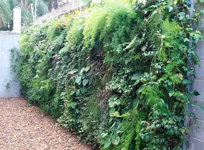 regatec1 - Benefícios dos jardins verticais no verão