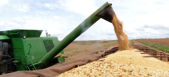 safra grãos - Liberados R$ 12,5 bilhões para financiar safra agrícola de 2018 e 2019