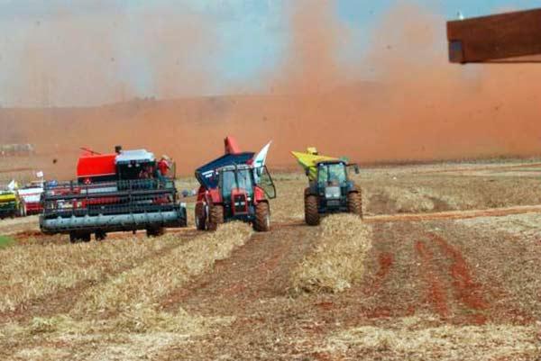 safra 1 - Chuvas aumentam projeção de safra agrícola para 2018