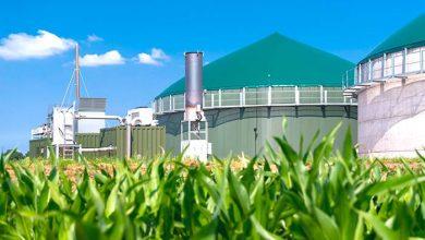 Biogás e ernergias renováveis no Brasil 390x220 - FIERGS vai a Holanda buscar investimentos em biogás