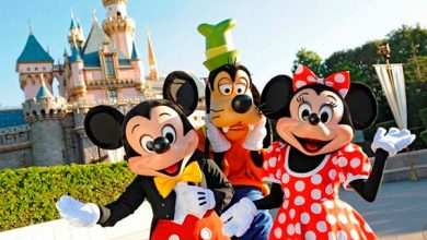 Conceito da Disney nos negócios 390x220 - Conceito da Disney abre a temporada 2018 da Oficina de Negócios em Novo Hamburgo
