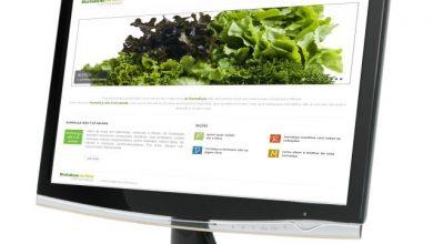 Embrapa Hortaliças 390x220 - Embrapa: Hortaliças combinam com todas as refeições