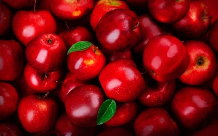 Maçã de Caxias do Sul - Colheita da maçã deve chegar a 105 mil toneladas em Caxias do Sul