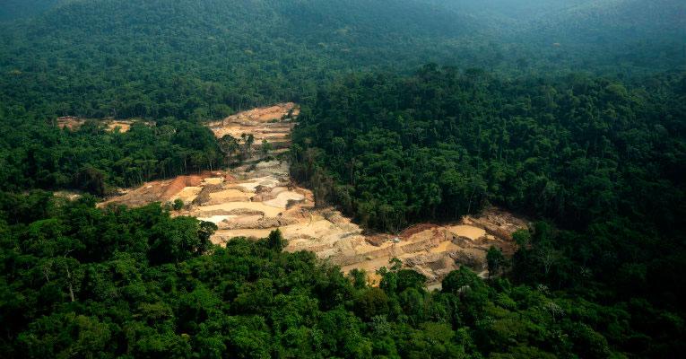 Projeto acompanha 357 mil quilômetros quadrados de mata por mês - Amazônia SAR emitiu 20 mil alertas de desmatamento