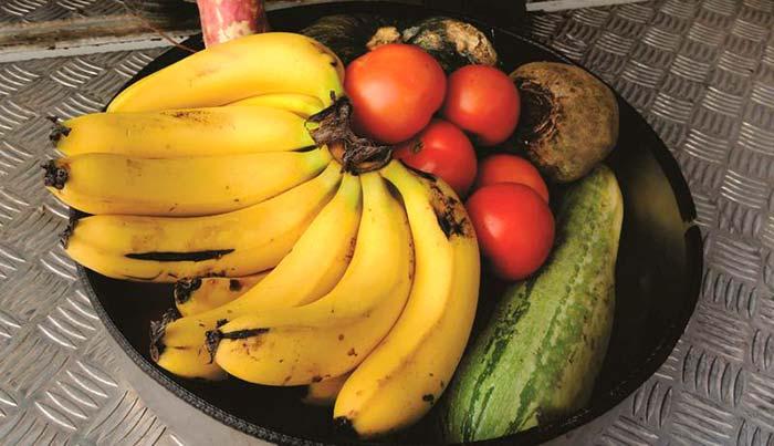 Troca Solidária em Caxias do Sul - Em Caxias do Sul população troca materiais recicláveis por comida