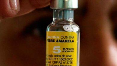 Vacina febre amarela  390x220 - Canela: vacinação contra a febre amarela na zona rural