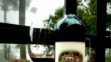 Vinho tinto do Hotel Toriba 1 390x220 - Vinho é lançado para comemorar aniversário de hotel em Campos do Jordão