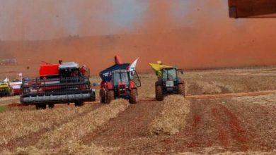 agrícola 390x220 - Empréstimos agrícolas de grandes e médios produtores crescem 14% na atual safra