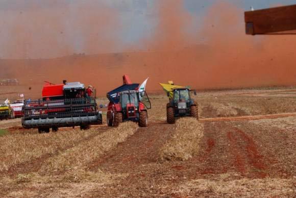 agrícola - Empréstimos agrícolas de grandes e médios produtores crescem 14% na atual safra