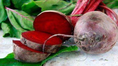beterraba 390x220 - Alimentos que previnem doenças vasculares