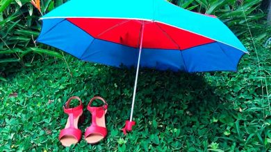 calçados 390x220 - Dicas de cuidados com os calçados