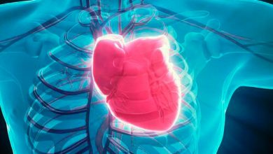 cora 390x220 - Sintomas que indicam problemas no coração
