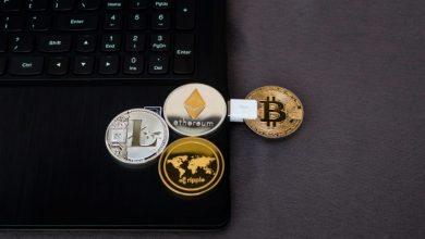 digital 390x220 - Banco Central e CVM alertam sobre o risco especulativo das moedas digitais