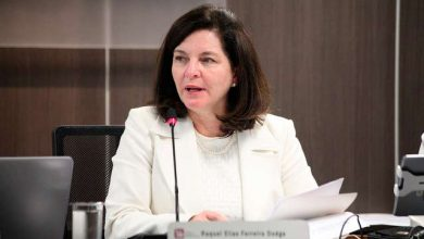 raquel dodge 1 390x220 - Raquel Dodge destaca trabalho do CNMP na defesa dos direitos dos migrantes e refugiados