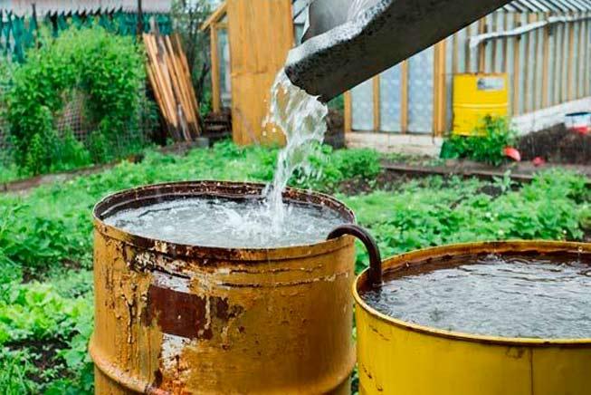 reuso agua chuva - Como reaproveitar água da chuva corretamente