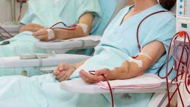 rins4 390x220 - Insuficiência renal crônica é a oitava causa de morte entre as mulheres no mundo