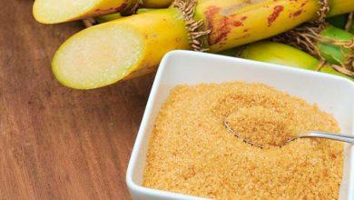 Cana de açúcar Brasil 390x220 - Aprenda a explorar a cana-de-açúcar no dia-a-dia