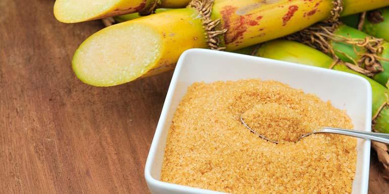 Cana de açúcar Brasil - Aprenda a explorar a cana-de-açúcar no dia-a-dia