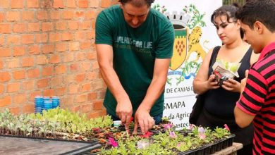 Caxias do Sul oficina de compostagem em Ana Rech  390x220 - Smapa promove oficina de compostagem em ação comunitária em Ana Rech