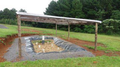 Embrapa Uva e Vinho e Fiema 390x220 - Seminário de Gestão Ambiental na Agropecuária acontece em abril em Bento Gonçalves
