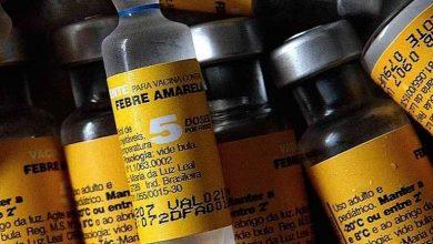 Photo of Alerta sobre febre amarela nas regiões Sul e Sudeste