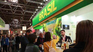 Foto André Bezerra 390x220 - Vinícolas brasileiras fecham negócios de US$ 1,6 milhão na Prowein