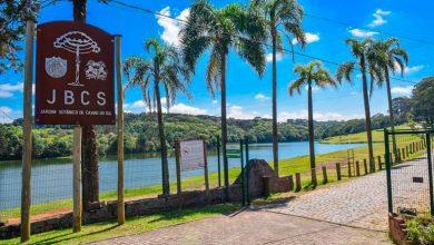 Jardim Botânico e no Mato Sartori 1 390x220 - Roteiros ecológicos no Jardim Botânico e no Mato Sartori em Caxias do Sul