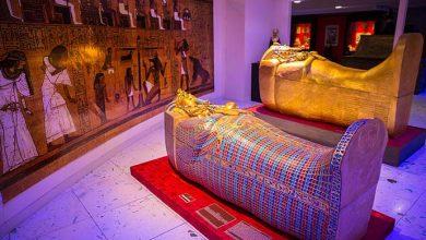 Museu Egipcio 4 Crédito Fábio Mattos 390x220 - Bourbon Wallig recebe Museu Egípcio Itinerante