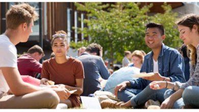 Nova Zelândia 390x220 - Governo da Nova Zelândia oferece bolsa de estudo até 14/03