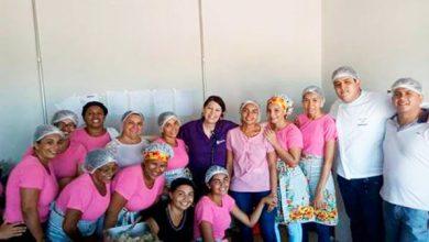 Pauta Dia Internacional da Mulher Programa Raízes 390x220 - Dia Internacional da Mulher, Programa Raízes