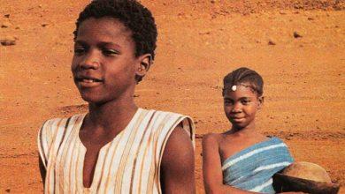 cinema africano 390x220 - Cinemateca Capitólio Petrobras destaca mestre do cinema africano