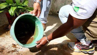 Photo of Mais de 650 pessoas morreram este ano em decorrência da dengue