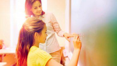 ed 390x220 - Secretários vão analisar documento que orientará currículos do ensino médio