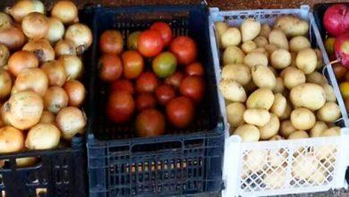 feira3 390x220 - Guaíba adere ao Programa de Aquisição de Alimentos