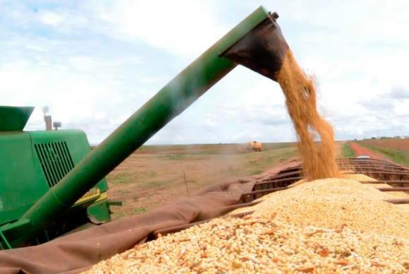 graos editada - Conab eleva projeção de grãos para 226 milhões de toneladas